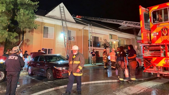 2 dozen displaced, dog killed after fire at DC apartment