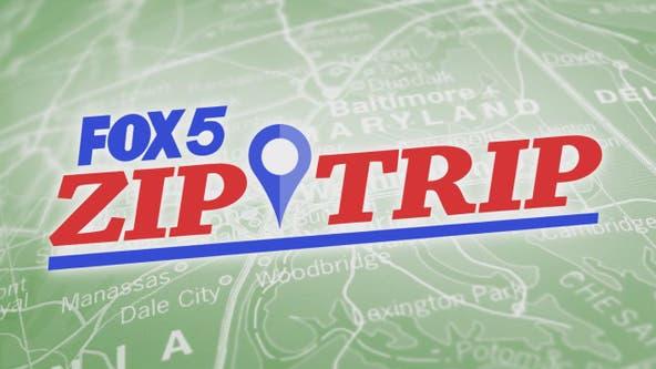 FOX 5 Zip Trip Ballston: 5 Must Stops!