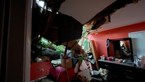 Springfield home crushed by massive tree amid severe weather