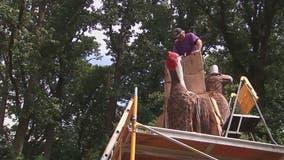 Montgomery County sculptor transforming tree into birds