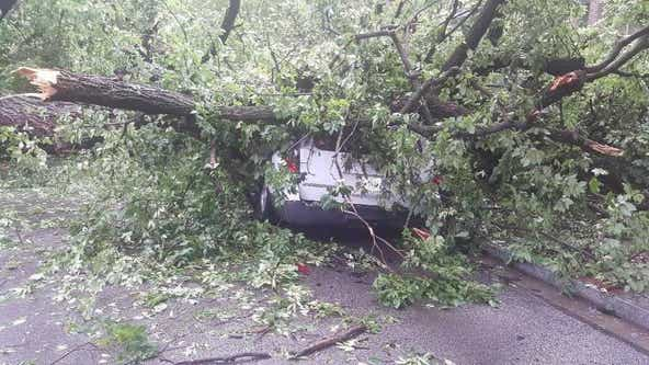 Severe storms slam DC, Montgomery County bringing trees down