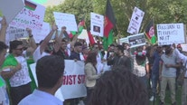Members of DC's Afghan community hold out hope for peace as Taliban sweeps through country