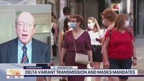 Delta variant transmission and masks mandates