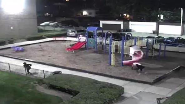 Surveillance video captures suspects discharging guns at DC playground