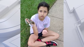 11-year-old 'endangered' girl missing from Fairfax County