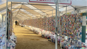 Thousands of 'soul boxes' on National Mall memorialize lives lost to gun violence