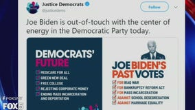 Biden joins crowded Democratic field