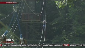 Zipline Across The Bronx River