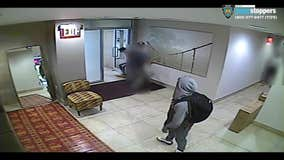 Package thieves assault building employee