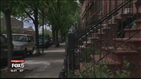 In Your Neighborhood: Red Hook, Brooklyn