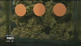 NYC marijuana plan