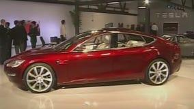Tesla buyout?