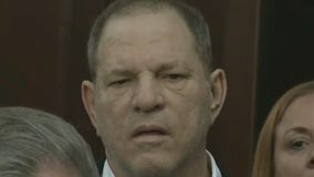 Harvey Weinstein appeals sex-crime conviction:  WSJ