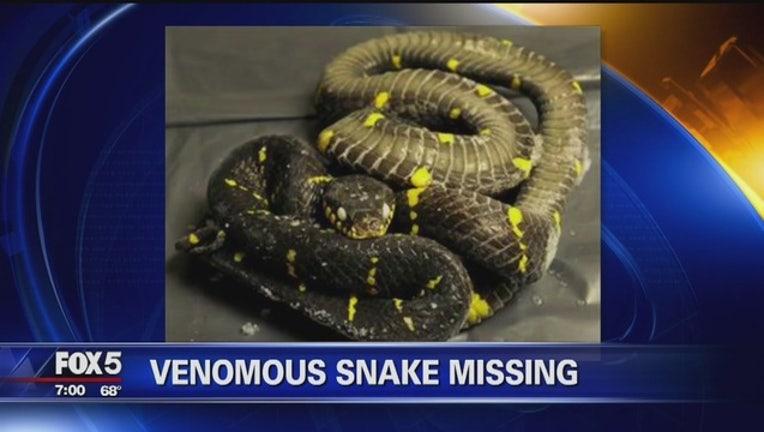48362bd5-snake-missing_1565279703687.jpg