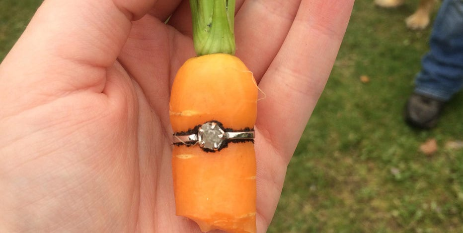 Man Proposes To Girlfriend By Growing Carrot Inside