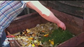 New York City considering expanding composting rules