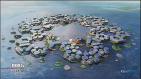 Are floating cities a solution for rising oceans?