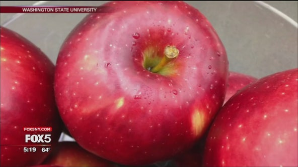 Say hello to the 'Cosmic Crisp' apple