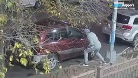 NYPD searching for suspect in assault, criminal mischief incidents in Brooklyn
