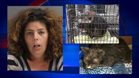 'Taking it to Jesus': Police say Florida woman nearly drowns cat