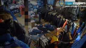 Thieves steal expensive jackets, attack store workers in Brooklyn