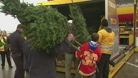 Operation Holiday Cheer: Trees for troops