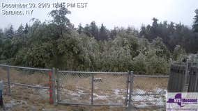 Time-lapse video: Trees slump under freezing rain