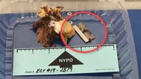 NYC Police Commissioner: Razor blade found in officer's sandwich was an accident