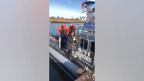 Dog rescued from drowning by Nassau police