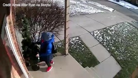A boy is on the nice list this year after being caught on camera fixing a fallen Christmas tree