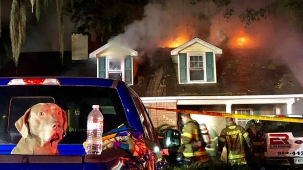 Sammy the dog barks alarm, saving Georgia family from fire inside home