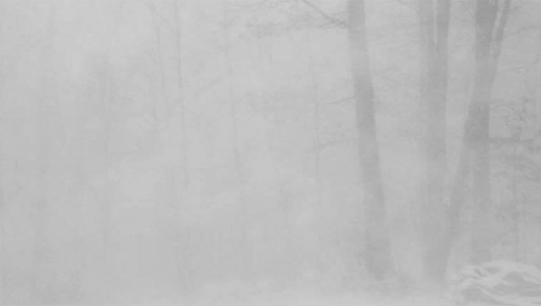 Whiteout conditions during a snow squall