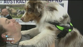 Hundreds turn out for 11th annual 'Meet the Breeds' event