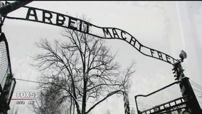 The story of the Holocaust, from a survivor