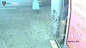 Police searching for Bronx guman who shot 2