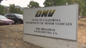 California DMV settles with soccer fan over vanity plates that come off as offensive