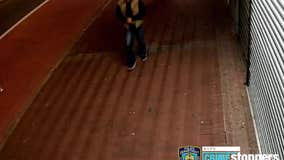 NYPD searching for Queens rape suspect