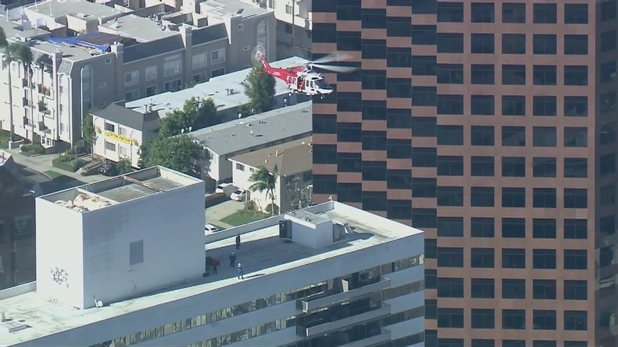 Eight injured, one critically, in West Los Angeles 25-story apartment building fire