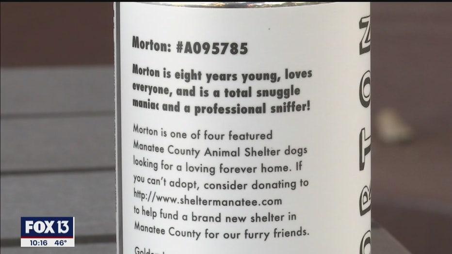 motorworks-adoptable-dogs-3.jpg