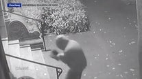 Vandal dumping human waste on church front steps