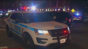 NYPD: 86-year-old woman dies after being assaulted, possibly over 'social distancing'