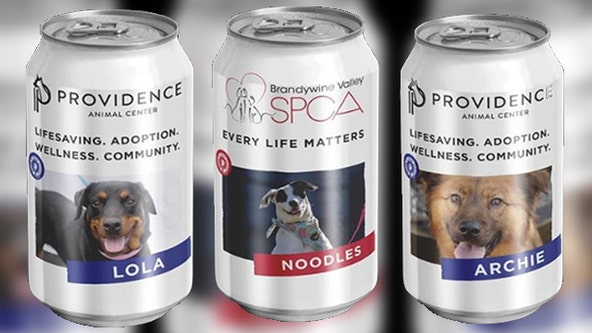 Pennsylvania brewery puts adoptable dogs on cans to help animal shelters