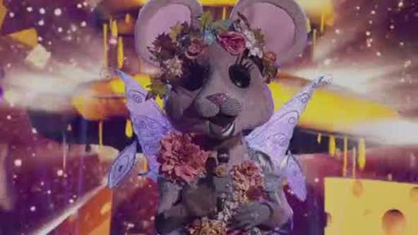 Most panelists on 'The Masked Singer' correctly guessed the identity of the Mouse