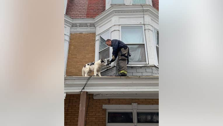 Credit: York City Department of Fire/Rescue Services via Storyful
