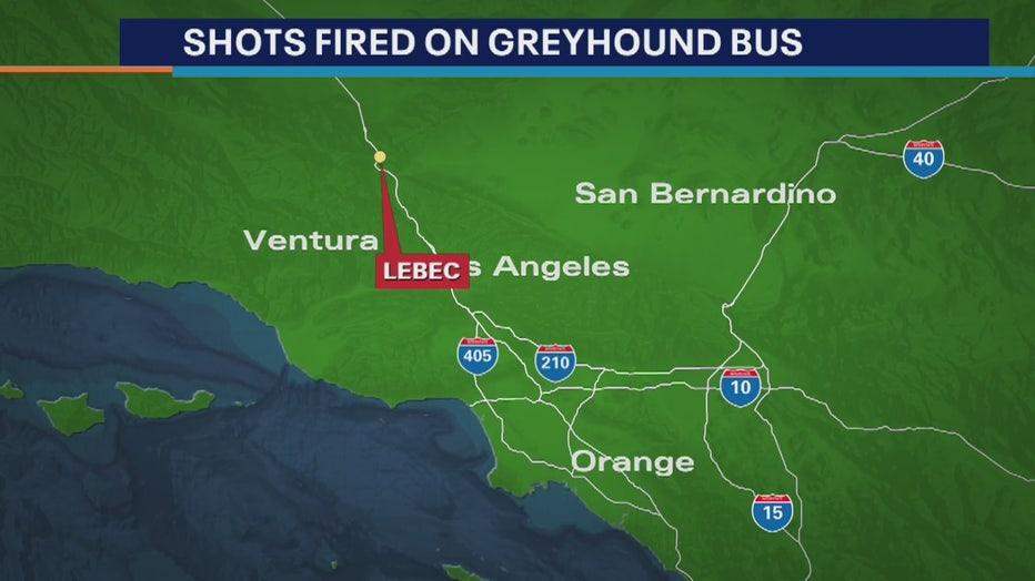 greyhoundbusshooting.jpg