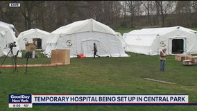 A closer look at the field hospitals in Central Park