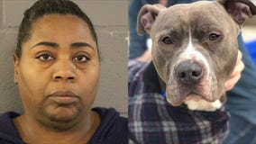 Woman charged in connection with abandoned dog found in trash bag