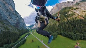 Dog leaps off 2,000-foot cliff with owner, parachutes to earth