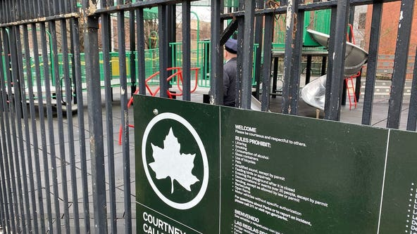 NYC public playgrounds close; Cuomo: 'I warned people'