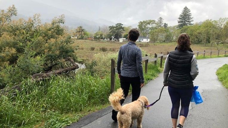 hiking in Marin County
